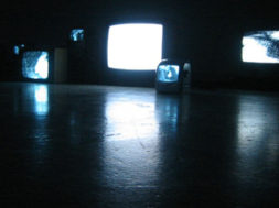 Screenscapes Video Installation